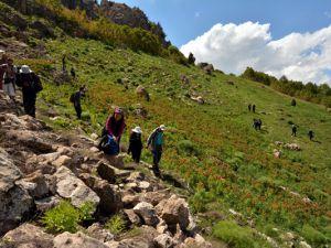 """Dersim'in dağları """"Ağlayan Gelinler""""le süslendi"""