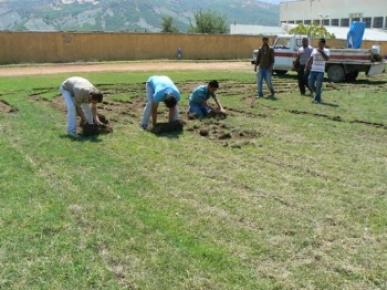 Atatürk Stadının çimleri yenilendi