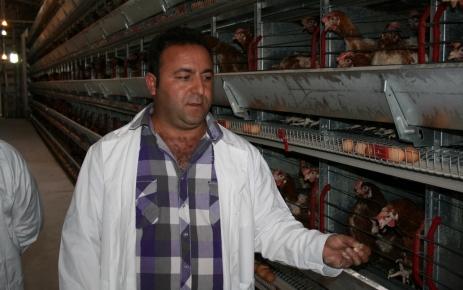 Avrupa'dan Gelip Tavuk Çiftliği Kurdu