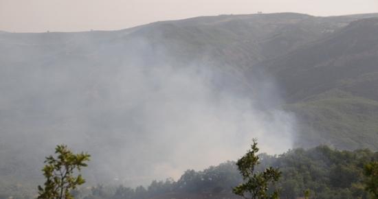 Tunceli'de Orman Yangınları devam ediyor