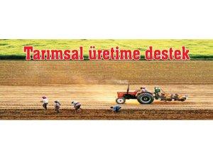 Dersim'de Üreticilere Sertifikalı Yem Bitkisi Tohumu Dağıtımı