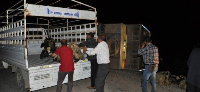 Dersim'de kaza: 5 yaralı