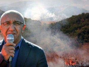 Dersim Milletvekili Önlü, orman yangınları için Meclis araştırması istedi