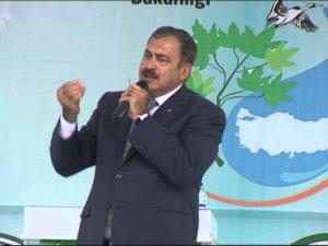 Orman ve Su İşleri Bakanı Eroğlu'dan Munzur Vadisi açıklaması