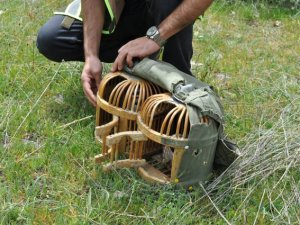 Kaçak keklik avına ceza