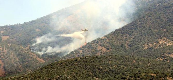Pertek'te orman yangınına uçakla müdahale