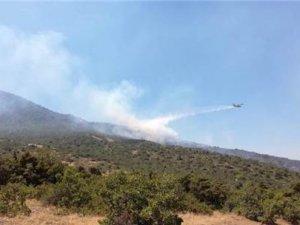Pertek'te orman yangını söndürüldü