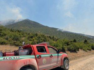 Orman yangını hasar tespit çalışmasına başlandı