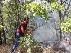 Çevre aktivistleri, yangını söndürmek için çalışıyor