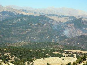 Milletvekili Erol, yangın bölgesini inceledi