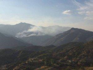 Kutudere'deki orman yangını devam ediyor