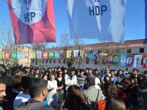 Dersim'de Newroz coşkuyla kutlandı
