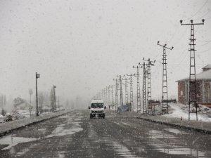 Baharda yağan kar hayatı olumsuz etkiledi