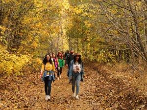 """Dersim'de sonbaharla gelen """"Renk Cümbüşü"""""""