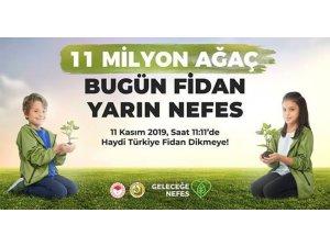 50 bin fidan Dersim toprağıyla buluşacak