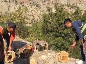Kaçak keklik avcılarına ceza