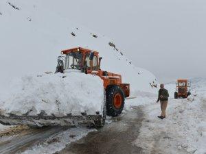 Kar kalınlığı 120 santimetreye ulaştı