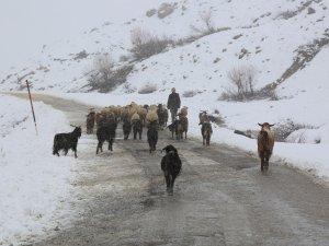 Kar yağışı etkili oldu, 32 köy yolu kapandı