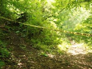 Ovacık'ta ormanlık alanda ceset bulundu