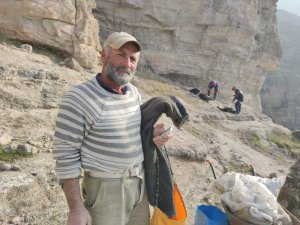 Kayalıklarda mahsur kalan keçileri AFAD ekipleri kurtardı