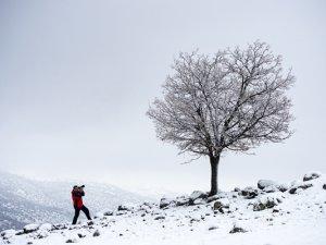 Karla kaplanan doğa kartpostallık manzaralar oluşturdu