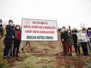 Kadına yönelik şiddetle mücadele kapsamında ''Mercan Hatıra Ormanı'' oluşturuldu