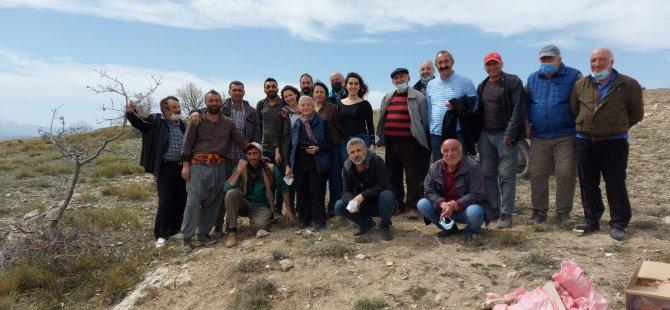 Belediye Başkanı Maçoğlu ve köylüler nohut ekti