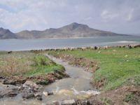 Keban Barajına kanalizasyon dökülüyor