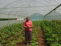 """""""Genç Çiftçiler Üretiyor"""" projesinin mahsulleri alınmaya başlandı"""