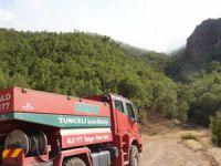 Tunceli Valiliği: Orman yangınları kontrol altına alındı