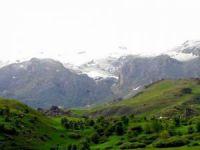 Doğa Gönüllüleri: Karagöz yaylaları maden tehdidi altında