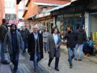 DTK heyeti Dersim'de temaslarda bulundu