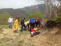 Mantar toplarken kalp krizi geçirdi VİDEO HABER
