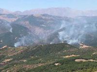 DAD Ankara Şubesi: Dersim'de çıkarılan yangının söndürülmesi engelleniyor