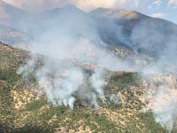 Sanatçı Tunç'tan orman yangınları için çağrı