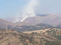 Zel Dağı'nda orman yangını