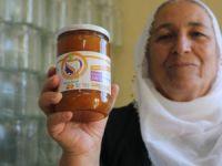 Organik meyveler kadınlar için geçim kaynağı oldu   VİDEO