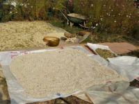 Anka Dersim, Ovacık kuru fasulyesini sofralarda buluşturuyor