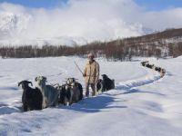 Besiciler çetin kış koşullarıyla mücadele ediyor