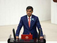 Milletvekili Şaroğlu, Pülümür konutlarını meclis gündemine taşıdı