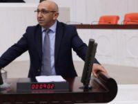Milletvekili Önlü, Dersim'deki göçü Meclis'e taşıdı