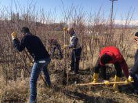 Belediye, Komün bahçeleri kuruyor