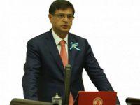Milletvekili Şaroğlu, Ovacık'ta arazilerin özel şirkete tahsis iddialarını Meclis'e taşıdı