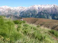 Dersim dağlarında mantar için zorlu yolculuk