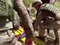 Yaylada arazi kavgası: 1 yaralı