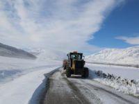 """""""Kar kaplanları""""nın zorlu kış mesaisi başladı"""
