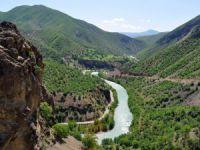 TEMA Vakfı: Erzincan ve Tunceli mera alanlarının yüzde 66'sı maden ruhsatlı