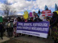 Dersim'de 8 Mart Dünya Kadınlar Günü kutlandı