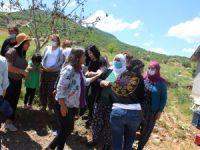 HDP Kadın Meclisi, Dersim'de emekçi kadınlarla buluştu