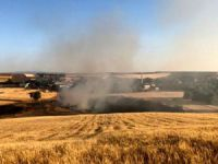 Çemişgezek'te 15 dönüm ekili alan yandı